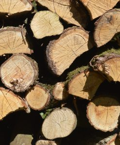 Premium Kiln Dried Oak